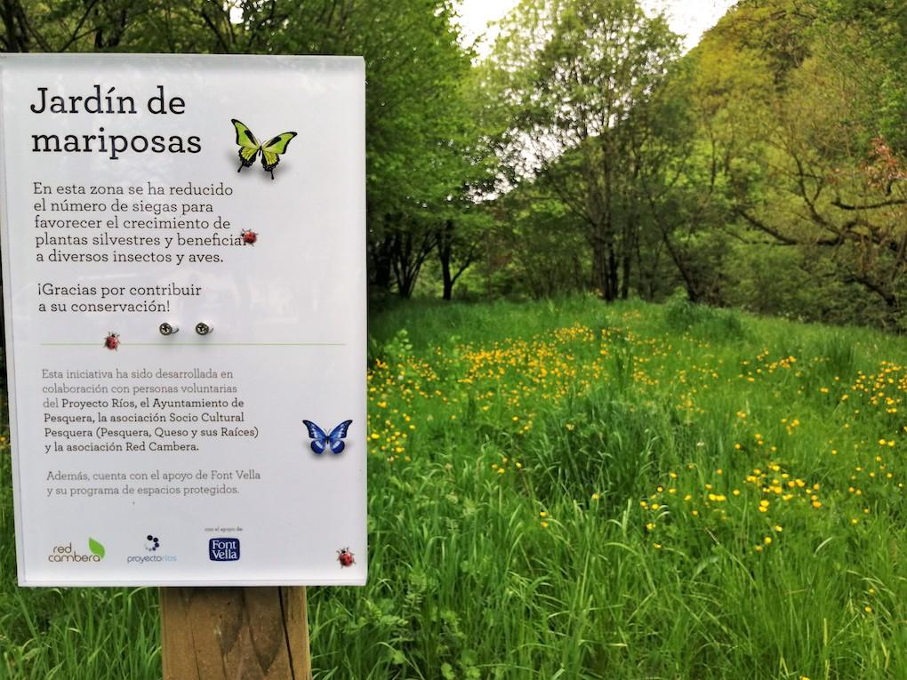 jardin_mariposas_Pesquera